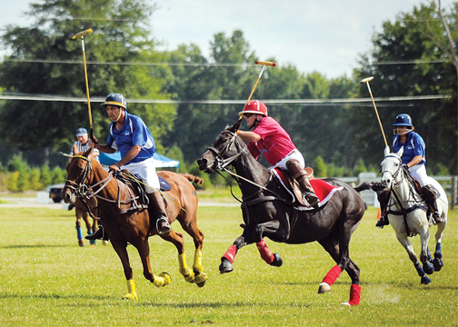 The Galloping Pig features a polo match between the Cincinnati and Columbus Polo Clubs, but also live music, food and fun for polo fans of all ages.