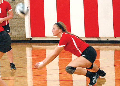 Felicity-Franklin's Bethany Perkins is the Lady Cardinals' tallest player and one of their best players at the net.