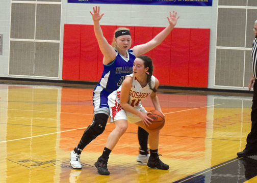 Williamsburg's Alexis Chase guards Goshen's Siera Hampton in the Lady Wildcats' victory on Saturday, Feb. 11, 2017.