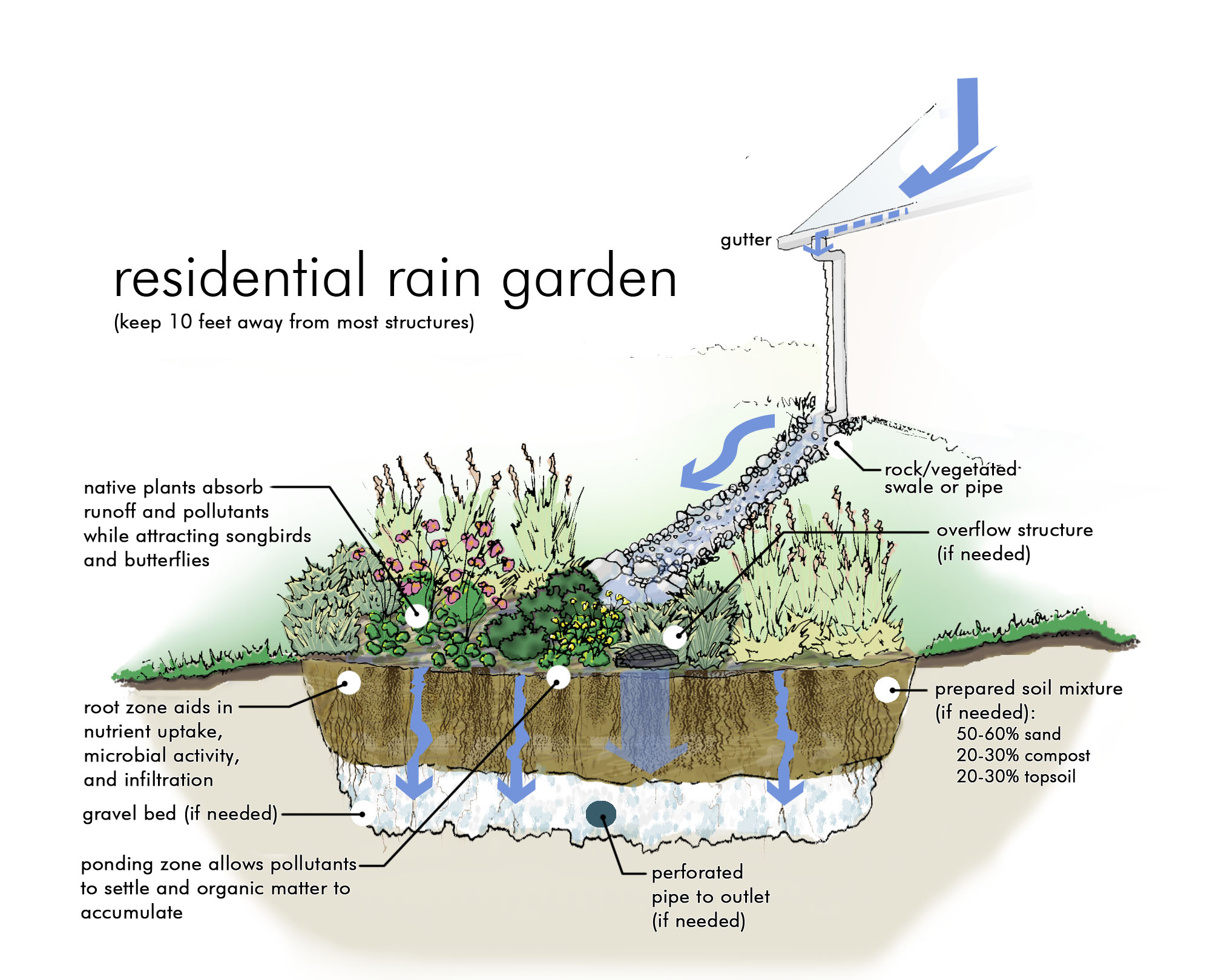 the clermont sun  free rain garden workshop in county
